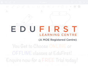 Edufirst - SEO Services Client Case Study